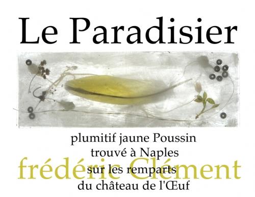 PARADISIER-facebook.jpg