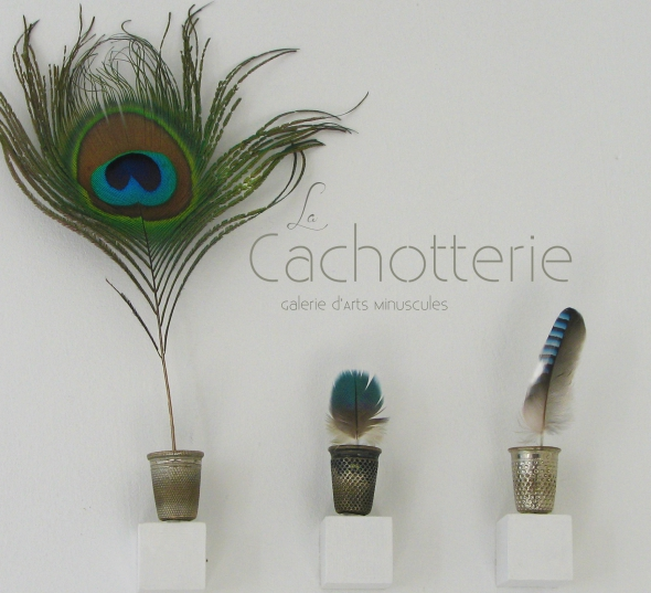 cachotterie, noir, corail,bleu, botanique, detail, galerie, minuscule, atelier, curiosité,rose