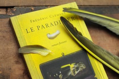 paradisier-plumes.jpg