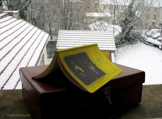 Paradisier-neige.jpg